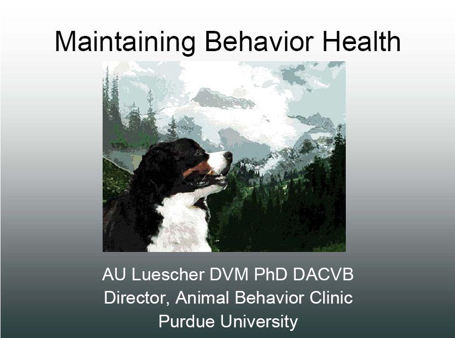 Bernese Lifestyle Behavior Management